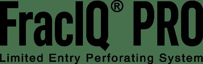 FracIQ Pro_Logo_05-07-2020_Black
