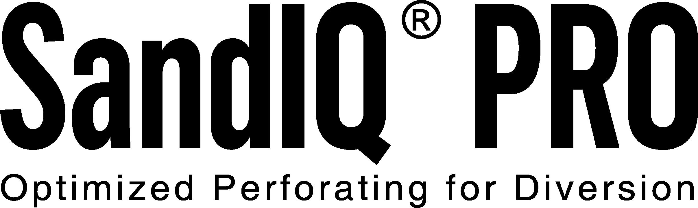 SandIQ Pro_Logo_Black